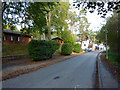 NH8911 : Dalfaber Road, Aviemore by Phil Champion