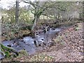 SE7296 : Spare tyre over Northdale Beck by Pauline E