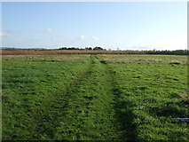 NZ4913 : Farm track off Stainton Way by JThomas