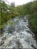 NM7047 : River Rannoch from Achranich Bridge by Peter Bond