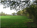 SJ6166 : Field edge boundary at Brook Farm by Dr Duncan Pepper
