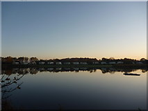 NT6578 : Rural East Lothian : Early Morning at Seafield Pond, Belhaven by Richard West