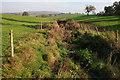 SO4409 : Ditch near Fishpool Farm by Philip Halling