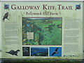 NX6865 : Galloway Kite Trail information by M J Richardson