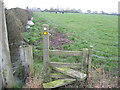 SJ6163 : Stile and field boundary with smelly ditch behind Bawk House farm by Dr Duncan Pepper