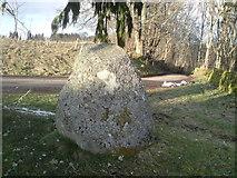 NH5141 : Meg's Stone by Craig Wallace