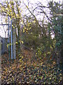 TM2565 : Footpath to the A1120 Saxtead Road by Adrian Cable