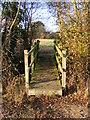 TM2170 : Footbridge of footpath off Water Lane by Adrian Cable