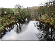 NU2304 : River Coquet, Warkworth by Alex McGregor