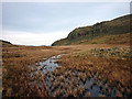 NY2409 : The marshy col between Pt 721m and Pt  775m on Glaramara by Karl and Ali