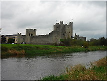 N8056 : Trim Castle by Anthony Foster