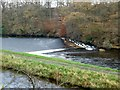 NN7002 : Deanston Weir and River Teith by Robert Murray