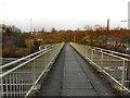 SJ9595 : Footbridge Across the M67 at Hyde by David Dixon