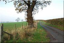 SJ9928 : Parkside Lane by Mick Malpass