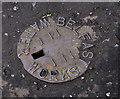 J3368 : Belfast Water Works cover, Belvoir, Belfast (2) by Albert Bridge