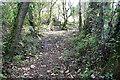 SW6042 : Path towards Carlean Farm by Graham Horn