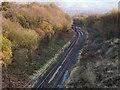 SJ9793 : Railway Cutting, South of Hattersley by David Dixon