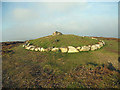 SJ1267 : Bronze Age burial mound - so the plaque states by Row17