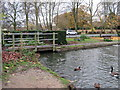 SP0381 : Pool, Shenley Fields Road & Start of Wood Brook by Roy Hughes