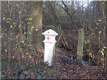 TQ1562 : Coal Tax marker post by Graham Howard