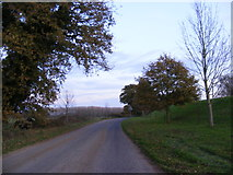 TM4579 : Road near the entrance to Henham Quarry by Adrian Cable