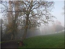 TQ3473 : Path in Horniman Park by David Anstiss