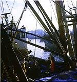 NJ9405 : Trawler landing catch at Aberdeen by Robert W Watt