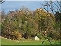 NT1571 : Millburn Tower by James Allan