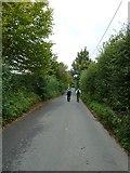 SU6017 : South Downs Society Green Travel Walks Week (217) by Basher Eyre