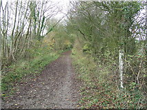 TL6353 : Post On Brook Lane by Keith Evans