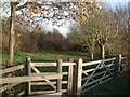 TF4865 : Gate at Entrance to Woodland, off Gravel pits lane by J.Hannan-Briggs