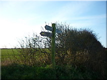 TA0779 : The Wolds Way near Flotmanby Brow by Ian S