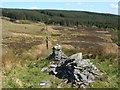 NS2785 : Dry-stone wall by Lairich Rig