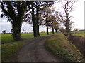 TM2674 : Verdons Lane by Adrian Cable