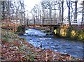 NH5142 : Bridge over the Dounie Burn by Craig Wallace