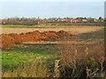 SK7957 : Dung heap near South Muskham by Trevor Rickard