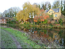 SU4828 : Houses by the disused canal in Winchester by Shazz
