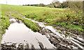 J2763 : Muddy field near Lisburn by Albert Bridge
