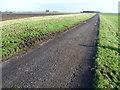 TL2086 : The road across Conington Fen by Marathon