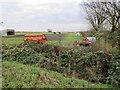 TL5691 : Horse Paddock by Hale Fen Farm by Hugh Venables