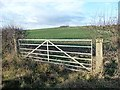 TA0875 : Field gate on the north side of the Wold Newton road by Christine Johnstone
