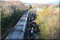 SX8376 : Heathfield station special train by roger geach
