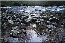 SX7070 : Widecombe in the Moor: the Dart below Wellsfoot Island by Martin Bodman