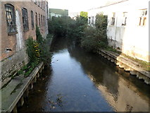 ST8558 : River Biss downstream from Town Bridge, Trowbridge by Jaggery