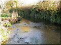 SU0725 : River Ebble, Mill Lane by Maigheach-gheal