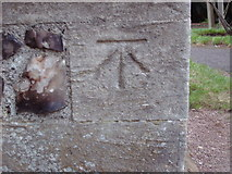 TQ0381 : Cut Bench Mark, St Peter's Church, Iver by dave-harris