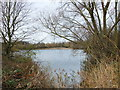 TL1962 : Weedy Lake, Paxton Pits Nature Reserve by PAUL FARMER
