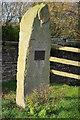 SO4901 : Millennium standing stone, Trelleck Grange by Philip Halling