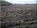 SP8503 : Muddy field near to Little Hampden Farm by Peter S
