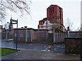 NS3975 : Riverside Walk, Dumbarton by wfmillar